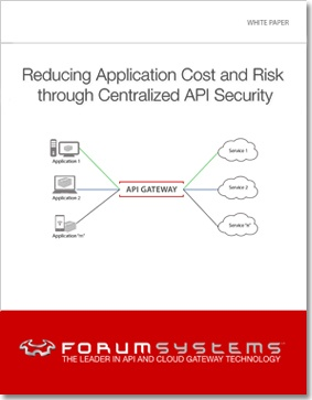 Reducing-Application-Cost-and-Risk-through-Centralized-API-Security